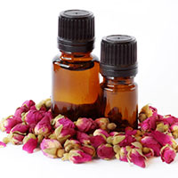 Tea Rose Absolute Oil