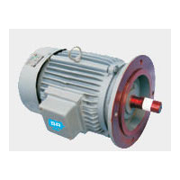 Induction Verticals Motor
