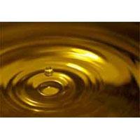 Xtreme Oil