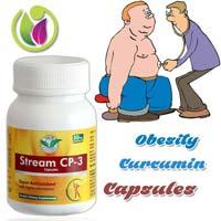 Obesity - Curcumin Capsules