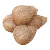 Fresh Coconut1