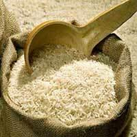 Milled Raw Basmati Rice