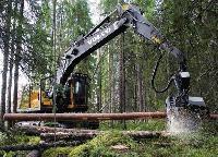 Tree Harvester