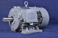 Electric Induction Motors