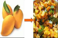 Mango Pickle Processing Equipment