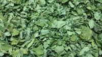 Organic Moringa Leaves (organic Moringa Oleifera Leaves)