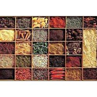 Indian Spices 001