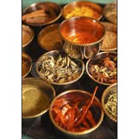 Indian Spices 002
