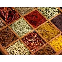 Indian Spices 003