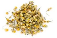 Dried Chamomile Flowers