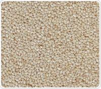 Hulled White Sesame Seeds Sun Dried