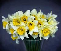 Fresh Flower Bouquet 013