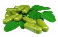 Moringa Leaf Powder Tablets & Capsules