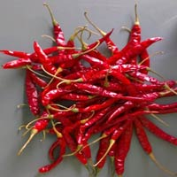 Guntur Teja Dried Red Chilli