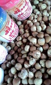 Betel Nut, Chalya