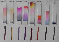 chromatography papers
