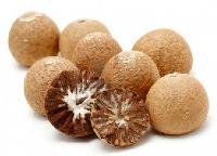 Dried Areca Nuts