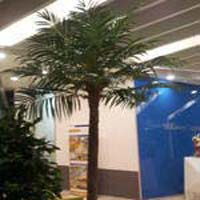 Artificial Coco Palm Tree