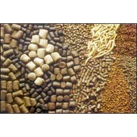 Cattle Feed Supplement