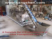Fresh Pomegranate Juice Production Line
