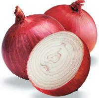 organic red onion