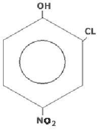 2-Chloro 4-Nitro Phenol