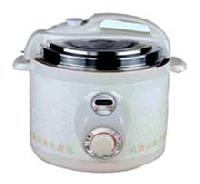 Electrical Pressure Cooker