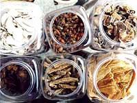 Herbal Medicine- 01
