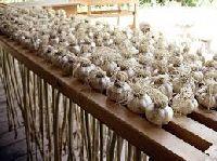 Garlic Dryer