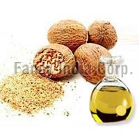 Mace Seed Extract