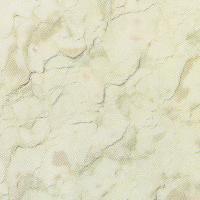 Wonder Beige White Marble