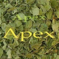 Moringa Leaves Whole