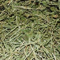 Passiflora Incarnata Herb