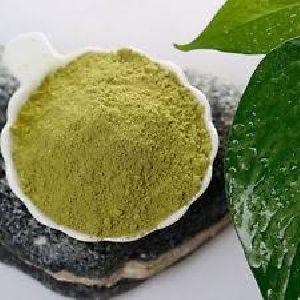 Easy To Use Quality Original Henna Powder