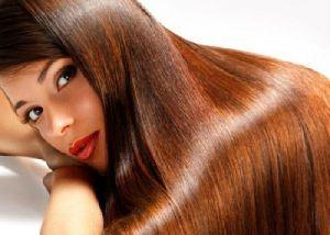 Halal Certified Natural Henna Powder Manufacturer Exporter
