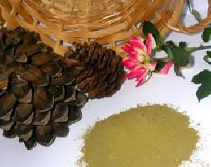 Natural Henna Powder Manufacturer from India