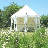 Pavilion Tent