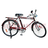 Bicycle Gents Ph 3