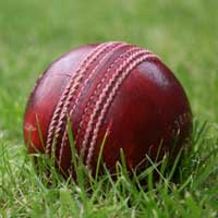 Leather Cricket Ball (01)