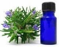 Organic Spearmint Oil