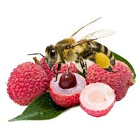Organic Litchi Honey