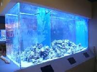 large aquarium tanks