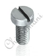 Cheesehead Screw