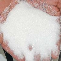 Indian Sugar (s30)