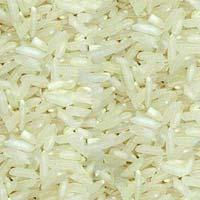 IR8 Rice