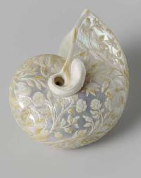 Sea Shell Carving
