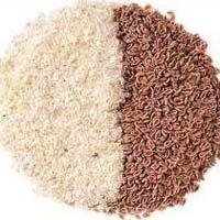 Isabgol Seeds