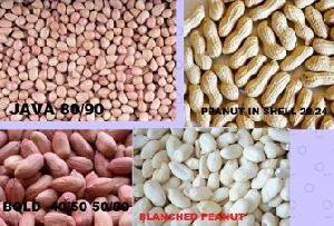 Raw Peanut Kernel