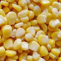 Iqf Frozen Sweet Corn