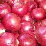 Small Red Onion , Fresh Onion
